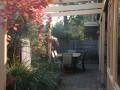 Banksia Courtyard